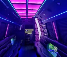 22 Passenger Party Bus