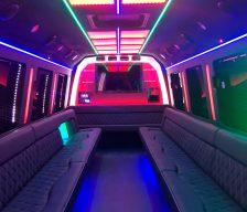 29 Passenger Party Bus
